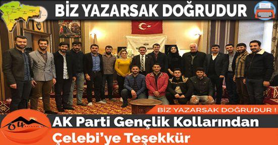 AK Parti Gençlik Kollarından Çelebi'ye Teşekkür