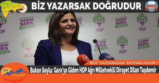 Bakan Soylu: Gara'ya Giden HDP Ağrı Milletvekili Dirayet Dilan Taşdemir