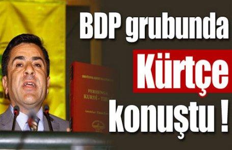 BDP grubunda Kürtçe sürprizi