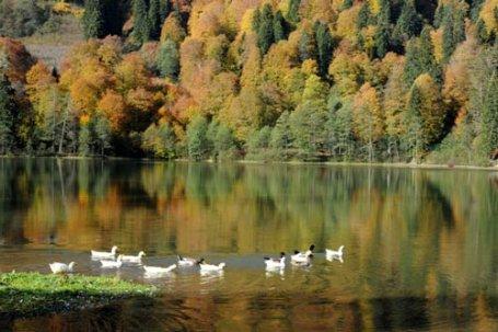 Doğu Karadeniz'de saklı bir cennet