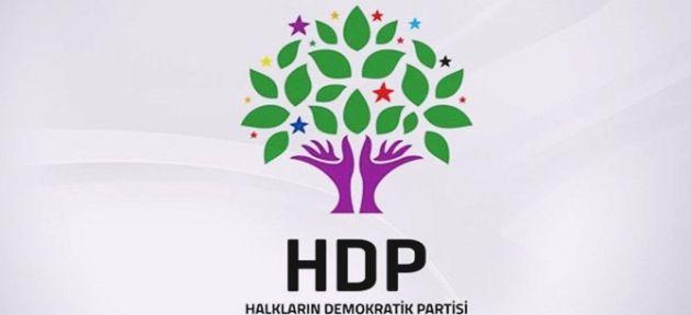 HDP Diyadin'de Değişikliğe Gitti