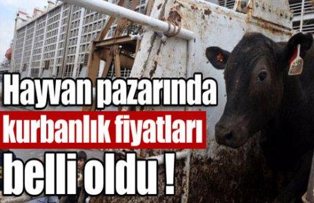 İşte hayvan pazarından kurbanlık fiyatları
