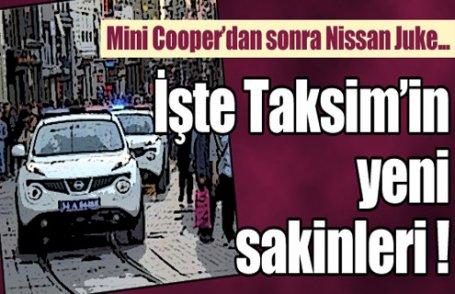 İşte Taksim'in yeni sakinleri!