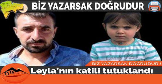 Leyla Aydemir'in Katili Tutuklandı