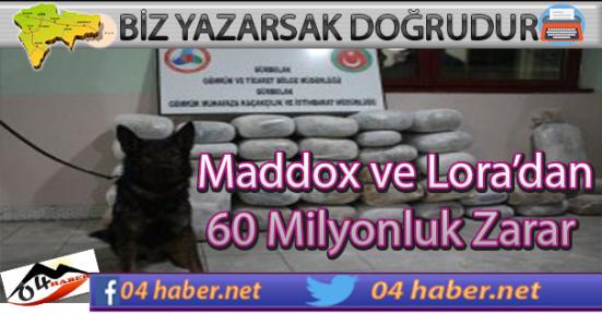 Maddox ve Lora 60 milyonlarına Maloldu