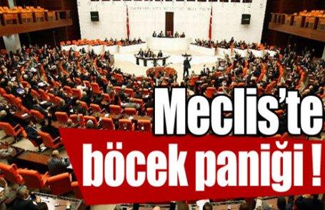 Meclis'te böcek paniği !