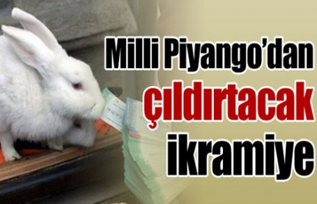 Milli Piyango'dan çıldırtacak ikramiye!