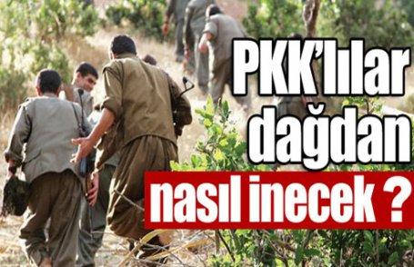 PKK dağdan nasıl inecek ?