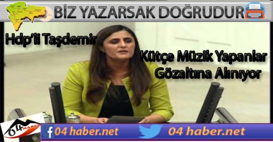 Taşdemir Kürtçe Müzik İçin Önerge Sundu