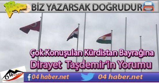 Taşdemir'den Kürdistan Bayrağına Yorum